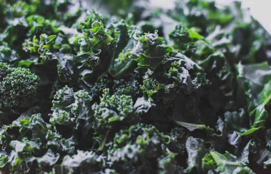 kale for Tuscan-style beef and vegetable soup
