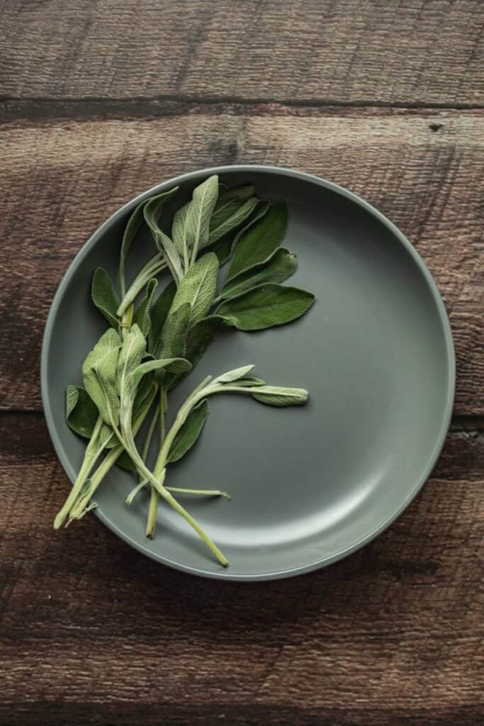 sage leaves on a gray plate